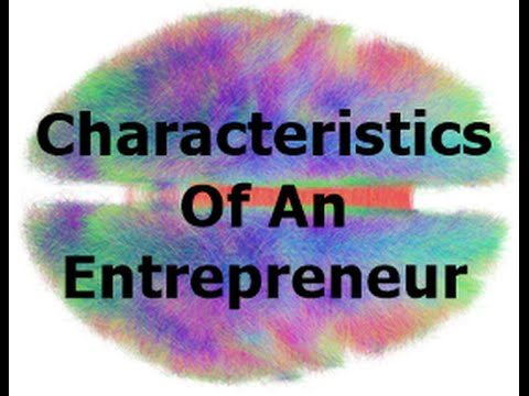 SUCCESSFUL ENTREPRENEURS HAVE THE FOLLOWING CHARACTERISITCS