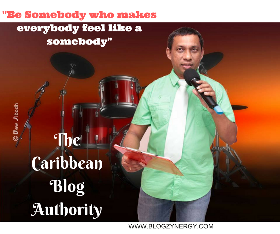 The Caribbean Blog Authority During A Presentation