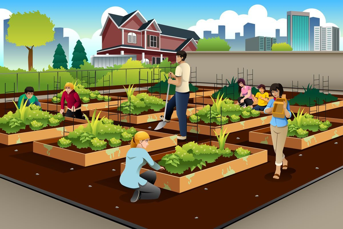 URBAN FARMING MAKE IT YOUR NEW HOBBY
